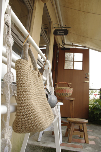 Kotoru blanc image photo